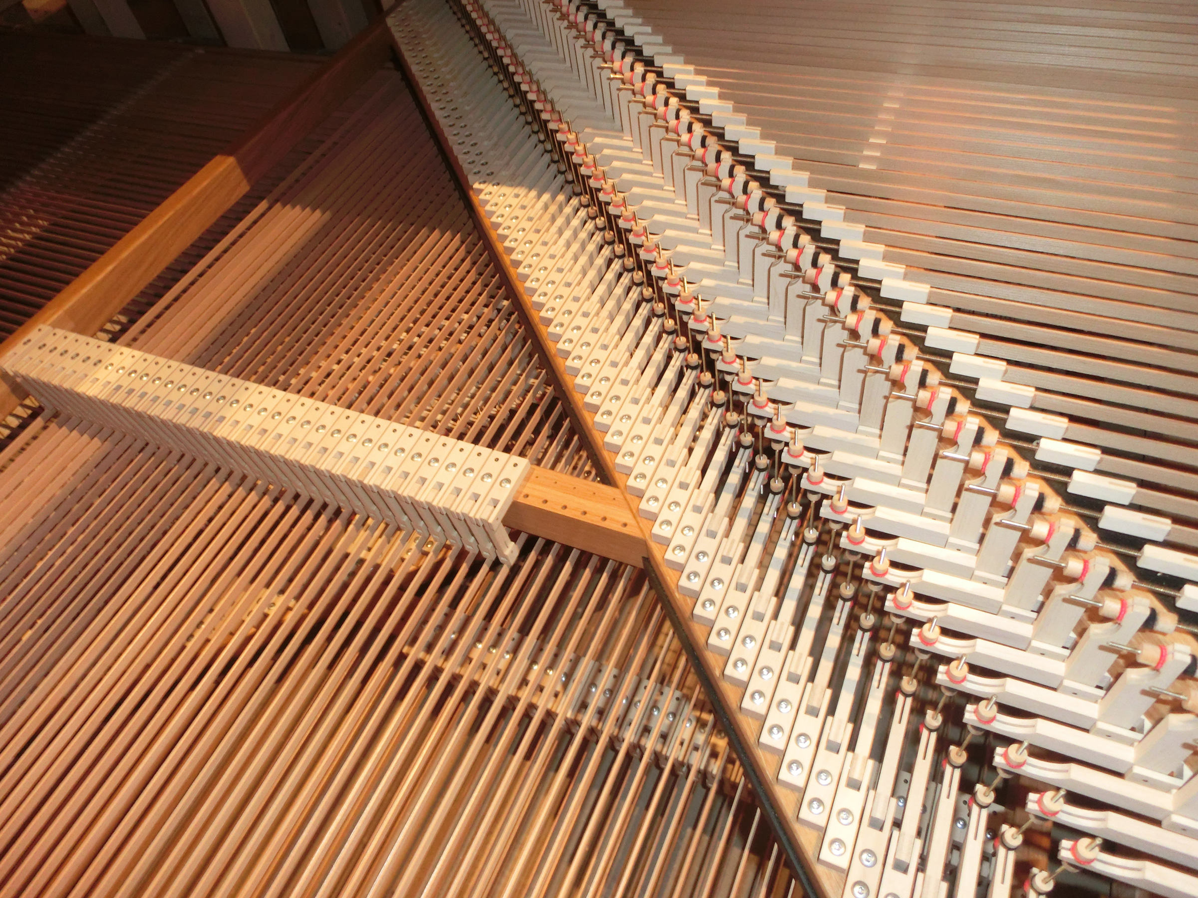 Orgelbau Sauer und Heinemann Startseite